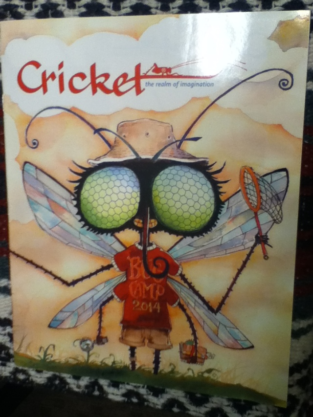 Cricket July-August